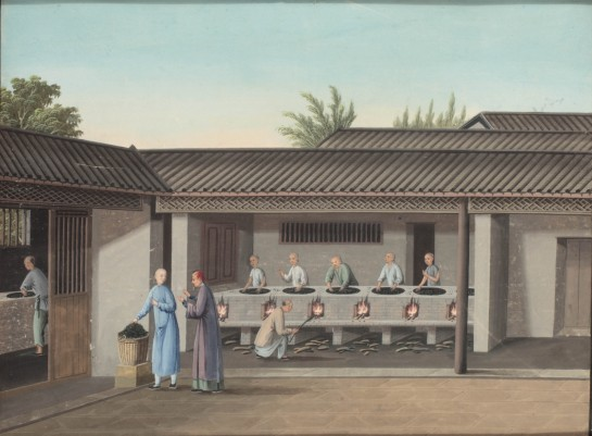 Complete Set of Chinese Tea Trade Paintings with full provenance